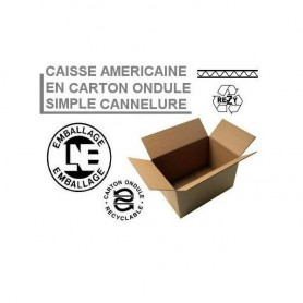 Caisses américaines simple cannelure 400x200x100
