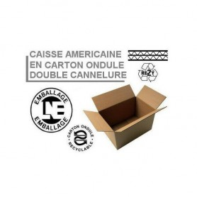 Caisses américaines double cannelure 250x250x250 mm